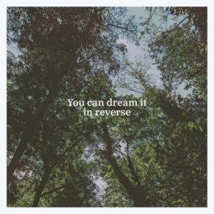 Black Tail - You Can Dream It In Reverse (Mia Cameretta Records/Lady Sometimes, 2020) di Gianni Vittorio